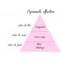 Musc blanc - Fondant parfumé naturel - lot de 4