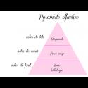 Un pied à Médine - Fondants parfumés naturels - lot de 4