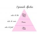 Pomme d'amour - Fondants parfumés naturels - lot de 4