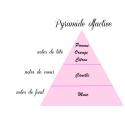 Pomme cannelle - Fondant parfumé senteur pomme cannelle